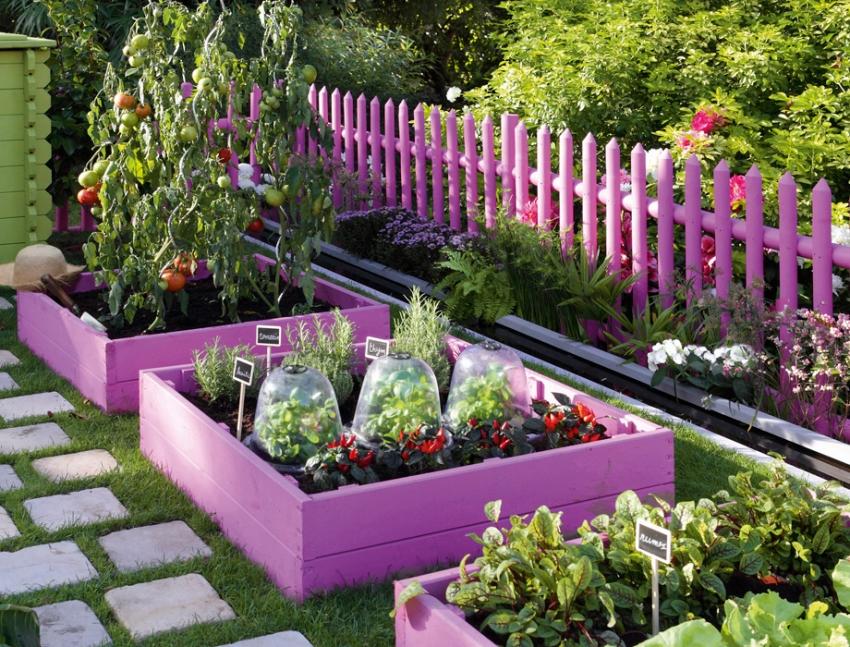 При правильном комбинировании растений, даже на небольшом участке земли можно получить щедрый урожай