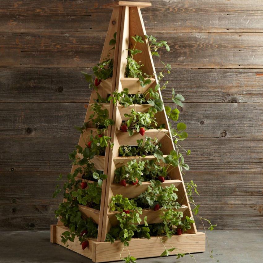 Пирамиду для выращивания клубники можно приобрести в специальных магазинах или изготовить самостоятельно