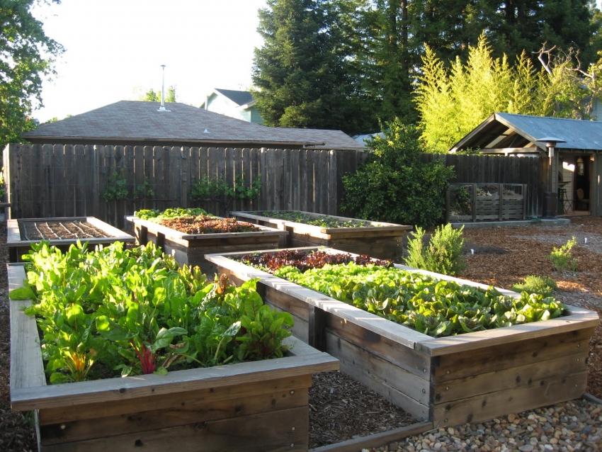 Специальный короб для теплой грядки можно соорудить самостоятельно или приобрести в садовом центре