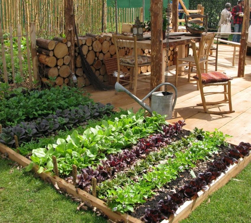 Небольшие грядки с ароматными травами и приправами можно удобно расположить возле летней кухни на участке
