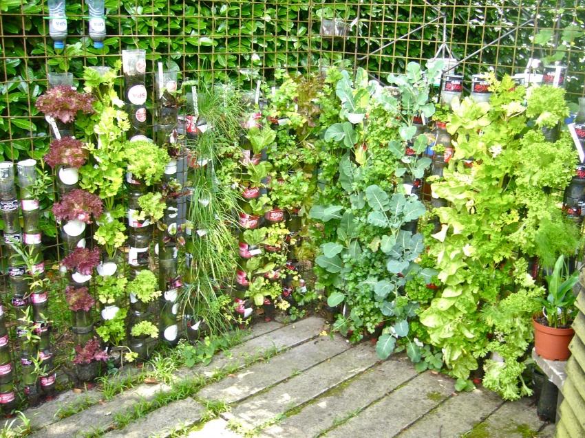 Чтобы сэкономить пространство участка можно организовать вертикальные грядки и высадить растения в бутылки или трубы