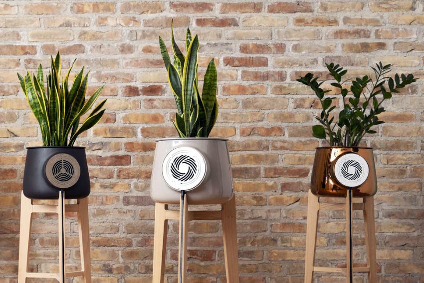 Природный очиститель воздуха с электронным управлением и вентилятором