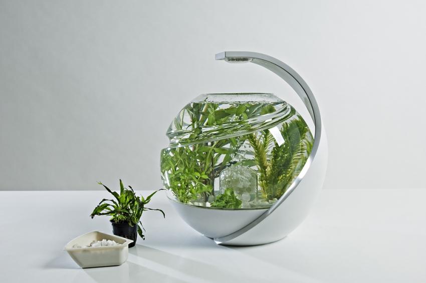 Аквариум является хорошим увлажнителем воздуха, так как с поверхности воды постоянно испаряется жидкость