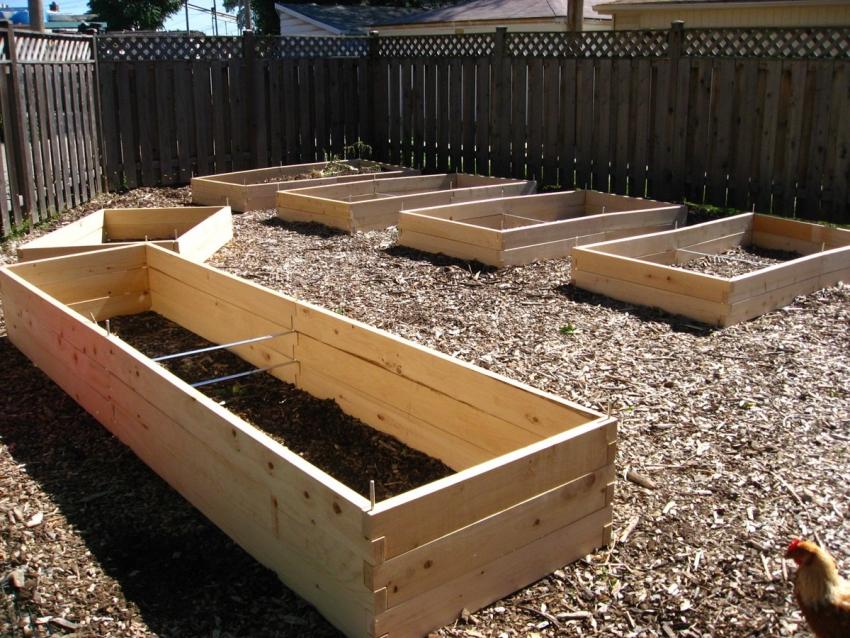 При изготовлении теплых грядок для огурцов стоит придерживаться четких инструкций чтобы не перенасытить почву удобрениями