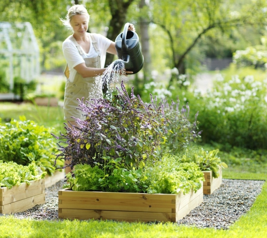 Для того чтобы вода не застаивалась в коробах, перед посадкой растений необходимо продумать дренажную систему