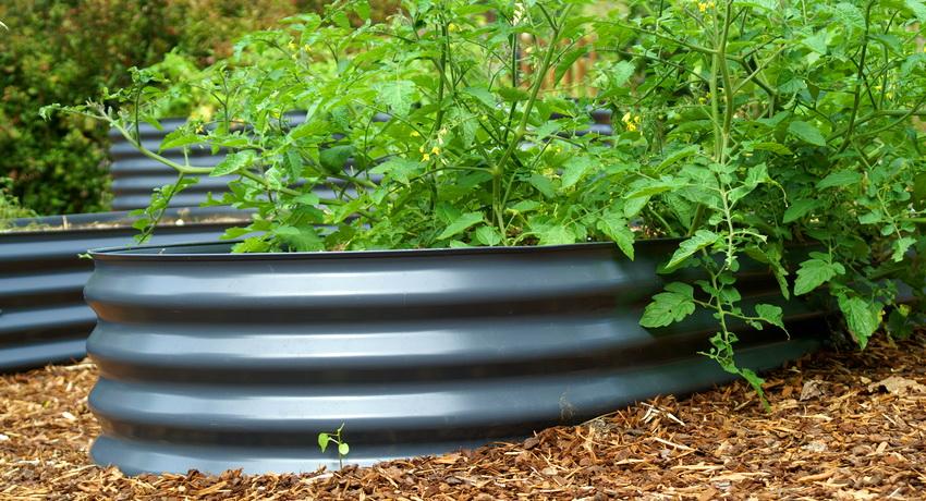 Металлическая грядка для выращивания овощей имеет удобную и долговечную конструкцию