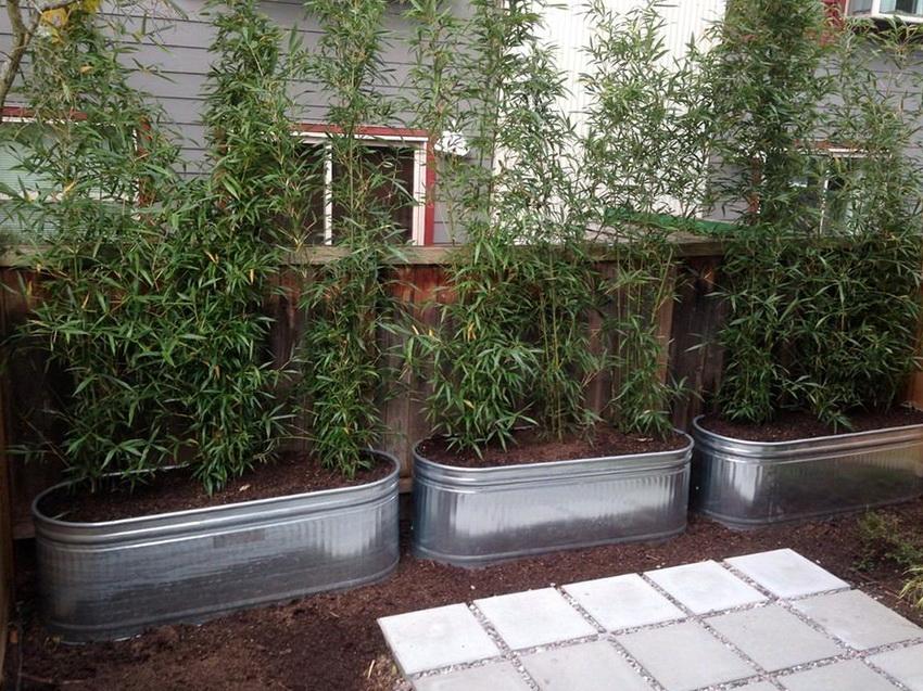 Для установки грядок из металла стоит выбрать не слишком освещенное место, для избежания гибели растений от перегрева