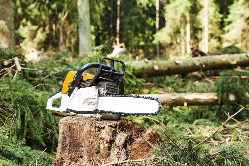 Бензопила профессионального класса рассчитана на работу, связанную с лесозаготовкой
