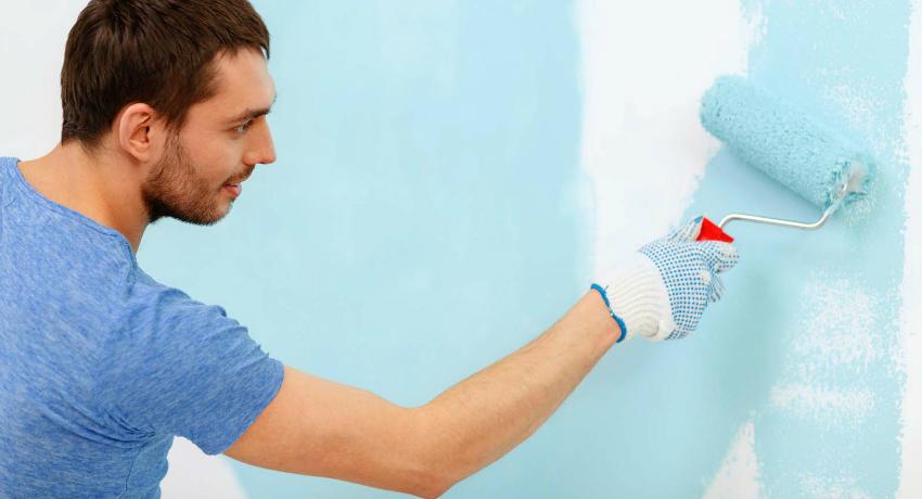 Краска для стен в квартире: свойства, виды и рекомендации по применению
