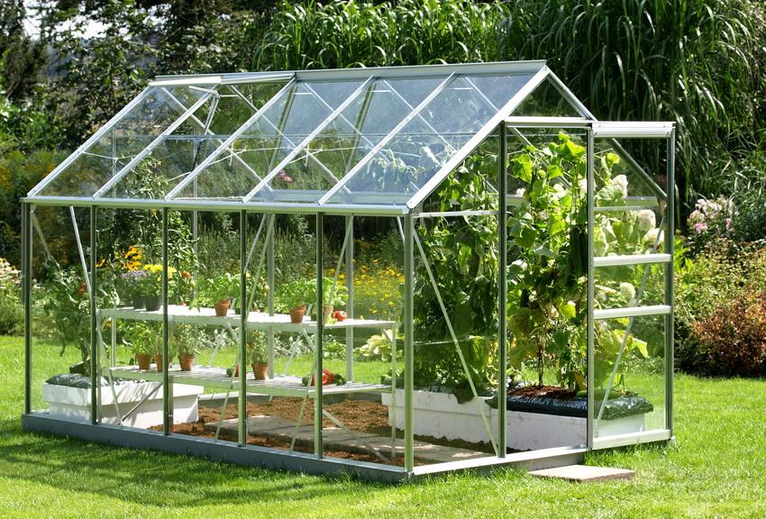 Для выращивания огурцов можно купить или соорудить удобный парник своими руками