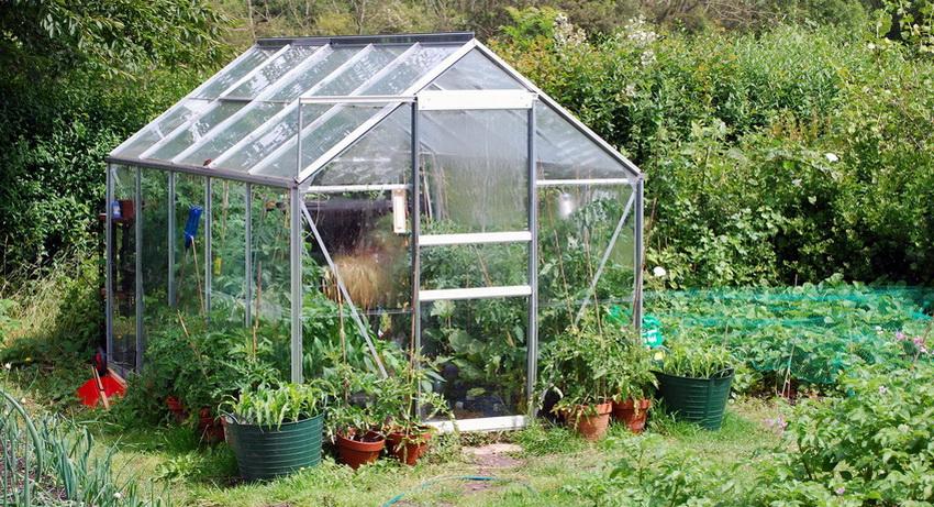 Для укрытия парника можно использовать такие материалы как пленку, стекло или поликарбонат