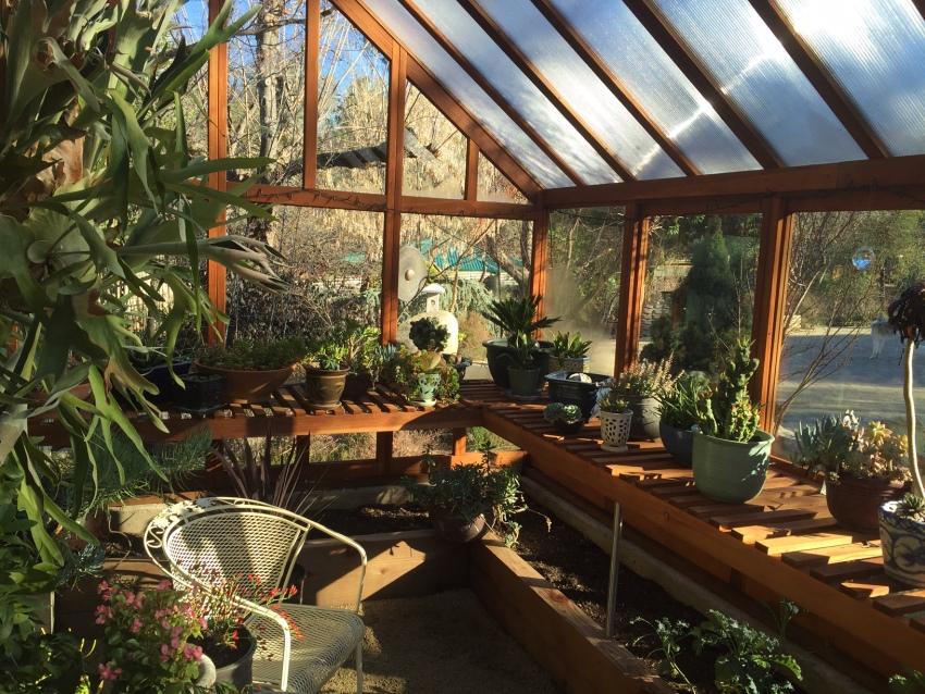 В теплую погоду рекомендуется оставлять парник открытым, чтобы обеспечить растениям максимально благоприятные условия