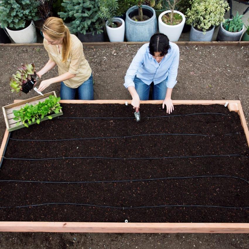 Правильно уложив все слои для теплой грядки, можно обеспечить питательную среду для растений на несколько лет вперед