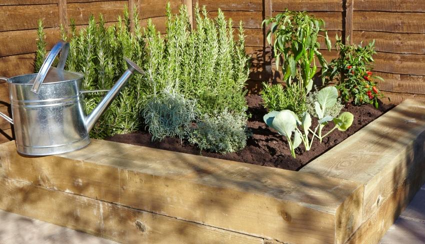 Овощи и травы, растущие в высоких теплых грядках, созревают быстрее, чем высаженные в открытый грунт