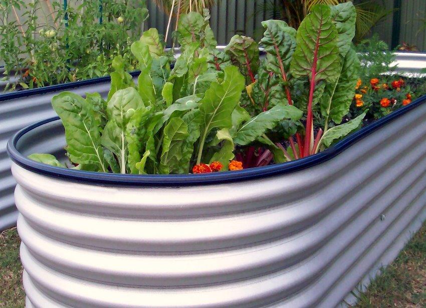 Высокий огород удобно вскапывать,пропалывать, удобрять и собирать с него урожай