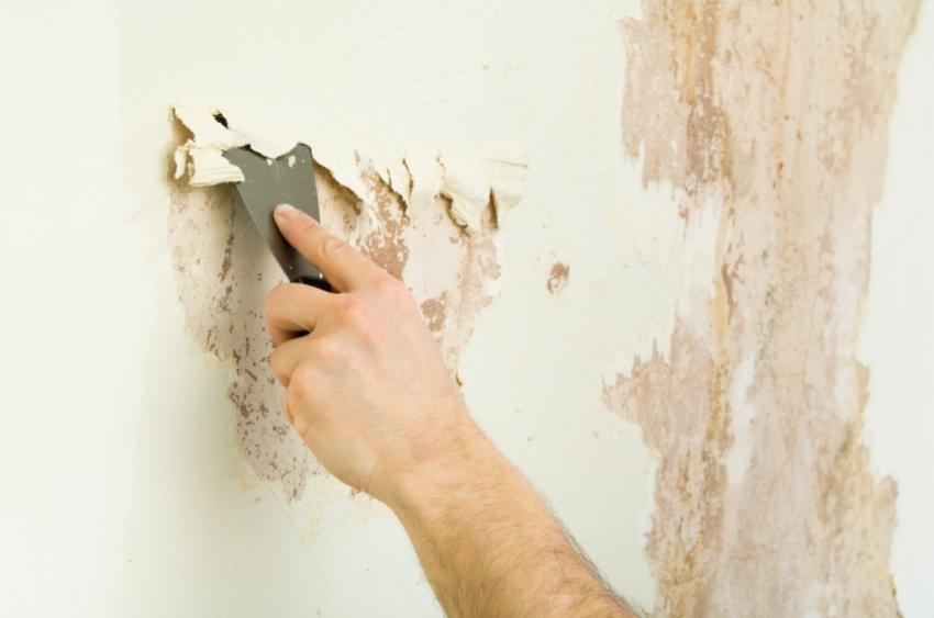 Старую краску со стены можно эффективно удалить с помощью небольшого шпателя