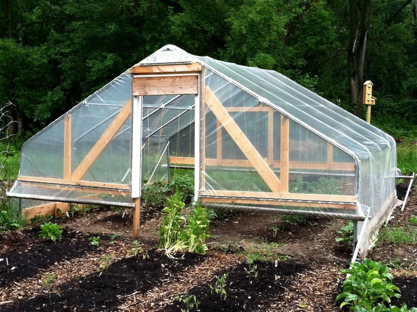 Стационарную конструкцию парника для помидор можно сконструировать используя профильные трубы, дерево и полиэтиленовую пленку