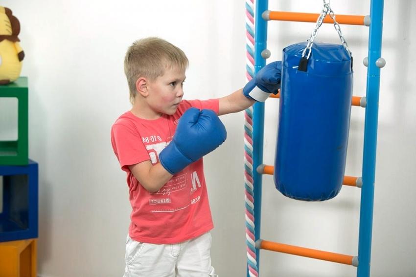 Груша является одним из любимых тренажеров у мальчиков, приобрести который можно отдельно при достижении определенного возраста ребенка