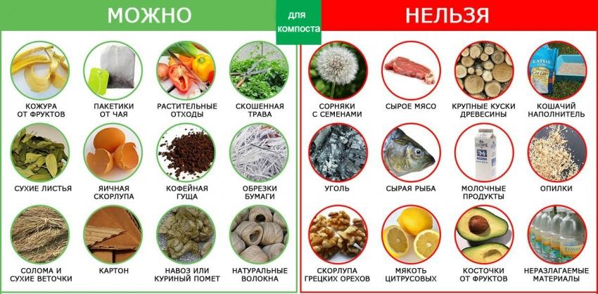 Список продуктов, которые подходят или вредят процессам создания качественного компоста