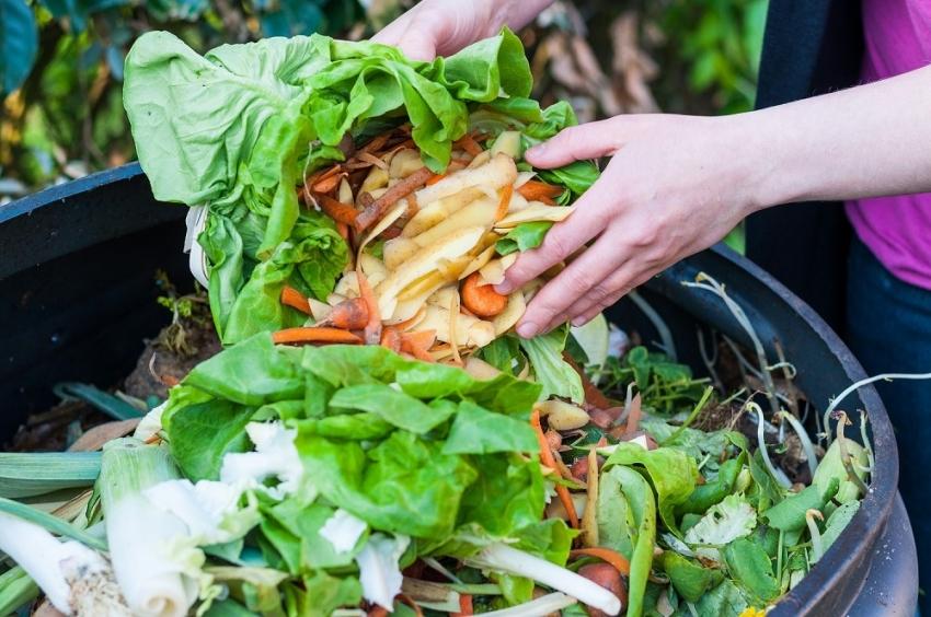 Для того чтобы получить компост высшего качества, следует внимательно отнестись к выбору отходов для компостной ямы