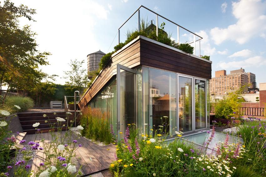 Прекрасный вариант обустройства плоской крыши - обустройство цветника