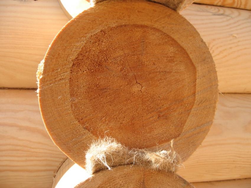 При покупке бревен для строительства бани, важно проверять качество древесины на срезах