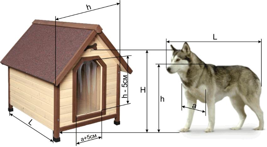 Размер будки должен соответствовать размеру взрослого пса