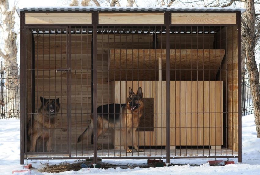 При содержании двух псов в одном вольере, стоит позаботится о спальном месте для каждого животного