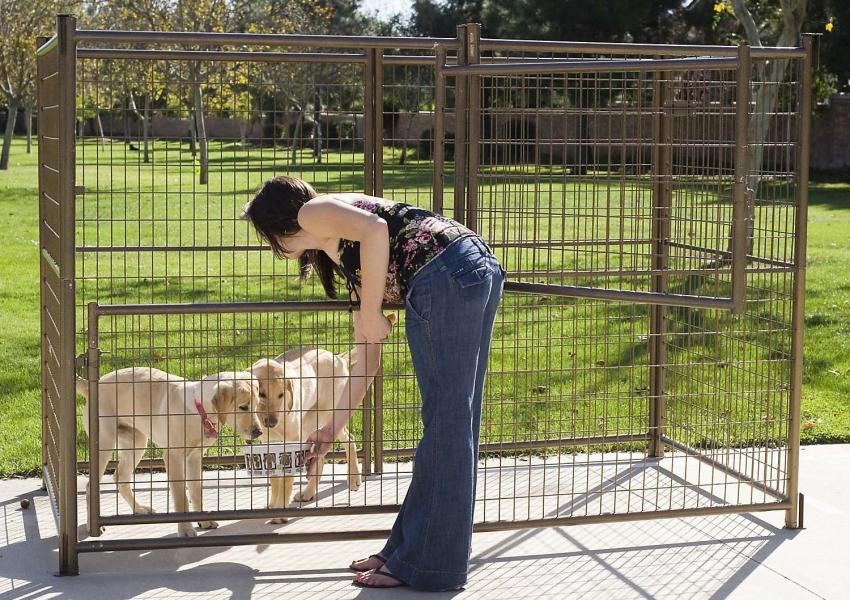 Вольер необходим щенкам в воспитательных целях а также чтобы обезопасить их