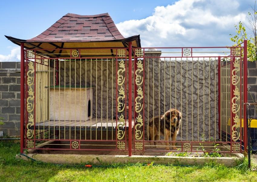 Красивый вольер для собаки можно соорудить своими руками из подручных материалов или приобрести конструкцию под ключ