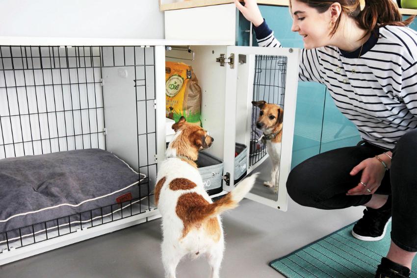 Вольер для квартиры можно соорудить из старой мебели или приобрести легкую разборную конструкцию