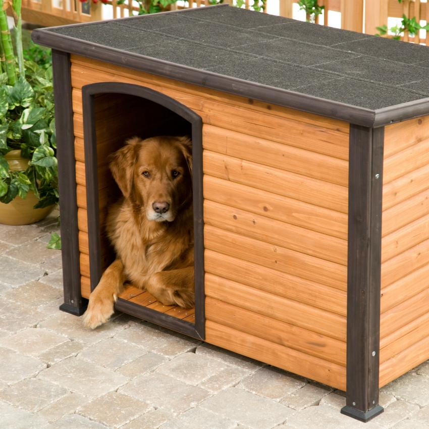 Легкую будку из дерева легко переместить из вольера в сад или при необходимости в дом