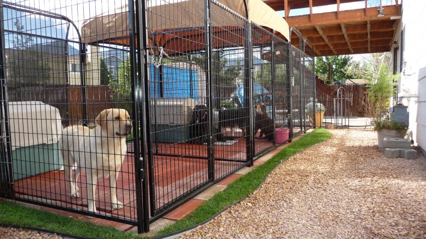 Лучшим вариантом для расположения вольера считается зона возле дома, для того чтобы животное не было одиноким и не скучало