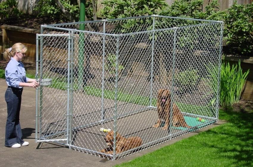 Для содержания собаки на улице необходимо соорудить вольер открытого или закрытого типа с достаточной площадью для свободного передвижения животного