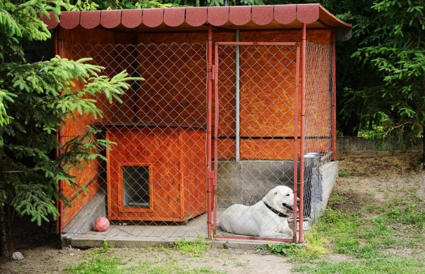 Собаку нельзя все время содержать в небольшом вольере, поэтому необходимо до начала строительства определится с назначением постройки