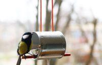 Птичья столовая выполнена из небольшой жестяной банки