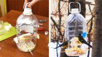 Технология создания зимней кормушки для птиц из пластиковой бутылки