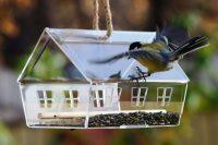 Готовая кормушка для птиц из пластика