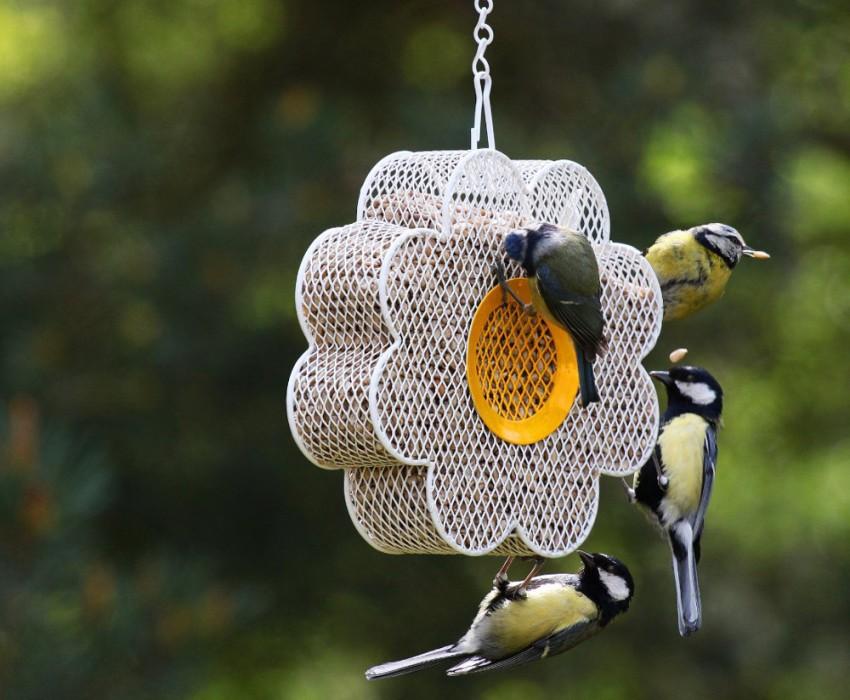 Кормушка для птиц выполнена в виде сетчатого цветка