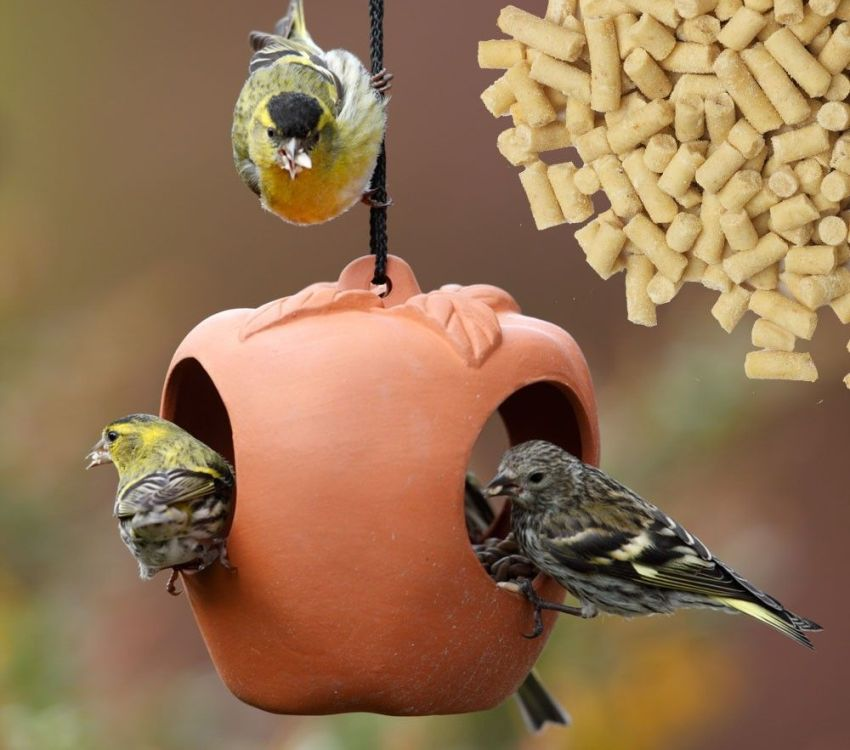 Кормушку для птиц можно отлить из гипса или глины