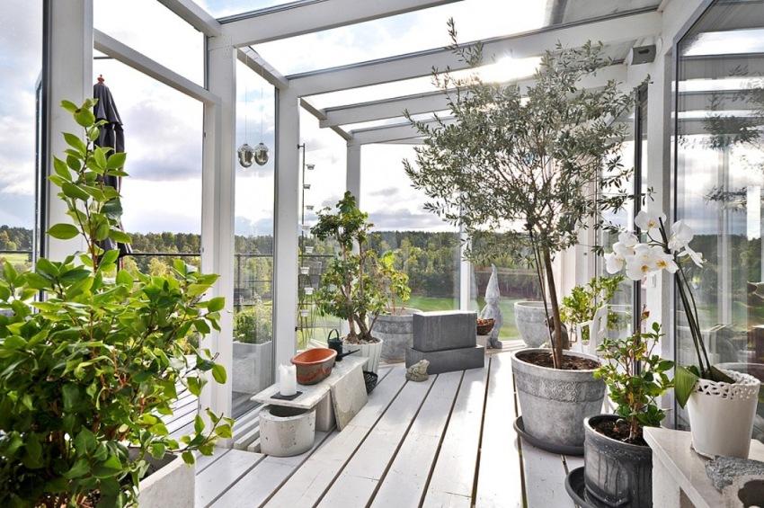 Хорошее естественное освещение для растений в зимнем саду – это главный фактор, обеспечивающий их жизнедеятельность