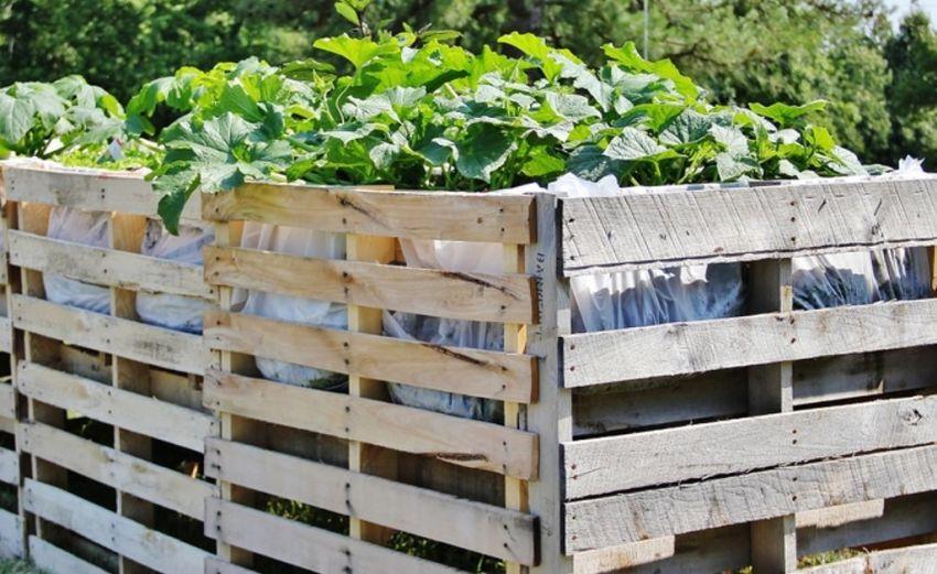 Из поддонов можно изготовить ограждения для огорода