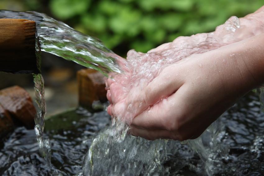 Артезианская вода не содержит нитратов и других вредных веществ, которые можно обнаружить в обычных грунтовых водах