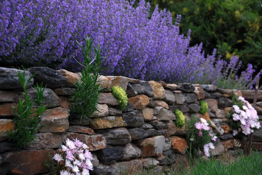Камень - еще один популярный материал для создания декоративных изгородей