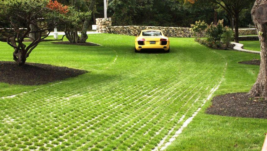 Георешетка зарастает травой или ее специально закрывают быстрорастущими растениями