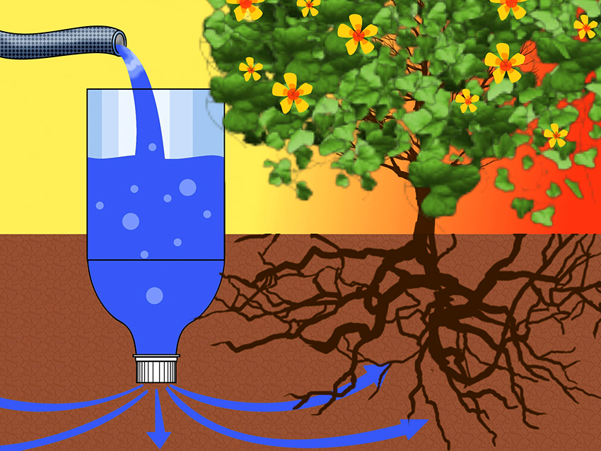 Принцип орошения растений с помощью пластиковых бутылок