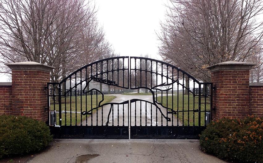 По типу открывания ворота бывают распашные, подъемные, откатные и раздвижные