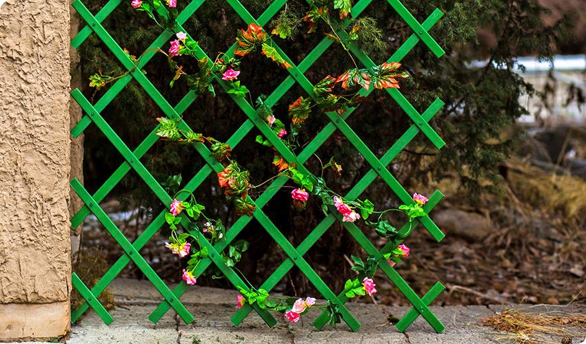 Если конструкция нужна исключительно для поддержки растений, то можно установить перголу-шпалеру