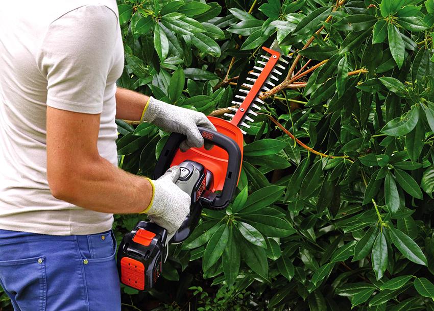 Бензиновый кусторез-триммер также можно использовать для подрезания деревьев и кошения травы