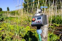 Система автоматического полива удобна тем, что производит орошение в указанное время и не требует больших усилий со стороны человека
